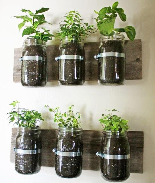 mason jar heb garden