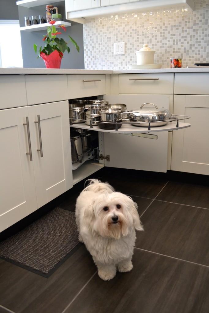IKAN kitchen